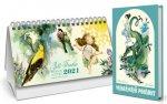 Trnkův stolní kalendář 2021 + Nejkrásnější pohádky