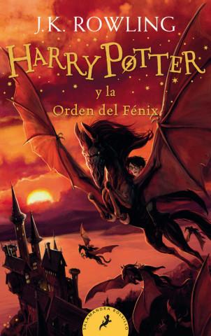HARRY POTTER Y LA ORDEN DEL FENIX HARRY