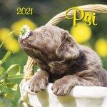 Psi 2021 - nástěnný kalendář
