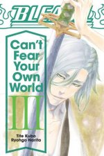 Bleach: Can't Fear Your Own World, Vol. 3