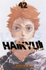 Haikyu!!, Vol. 42