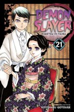 Demon Slayer: Kimetsu no Yaiba, Vol. 21