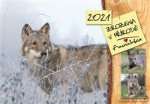 Zrozena v přírodě - Anuschka - kalendář 2021