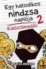Egy hatodikos nindzsa naplója 2. - Kalóztámadás