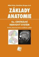 Základy anatomie 4a.