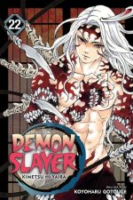 Demon Slayer: Kimetsu no Yaiba, Vol. 22