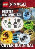 LEGO® NINJAGO® - Meister des Spinjitzu