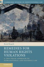 Remedies for Human Rights Violations