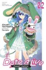 Date A Live, Vol. 2 (light novel)