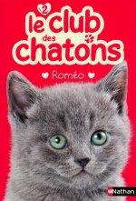 Le club des chatons 2: Roméo