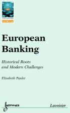 European banking - historical roots and modern challenges