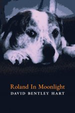 Roland in Moonlight