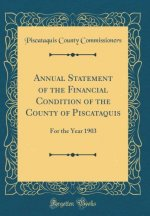 Annual Statement of the Financial Condition of the County of Piscataquis