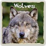 Wolves 2022 Wall Calendar