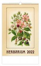 Herbarium 2022 - nástěnný kalendář