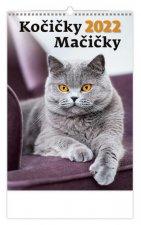 Kočičky 2022 - nástěnný kalendář