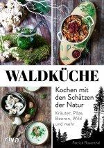 Waldküche: Kochen mit den Schätzen der Natur