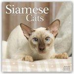 Siamese Cats 2022 Wall Calendar