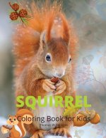 Squirrel Coloring Book for Kids