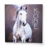 Koně 2022 - nástěnný kalendář