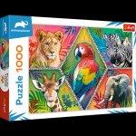 Puzzle 1000 Egzotyczne zwierzęta 10671