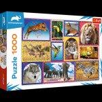 Puzzle 1000 Dzika natura 10673