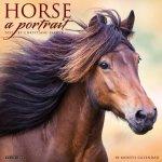 Horse: A Portrait 2022 Wall Calendar